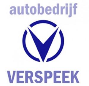 auto reparatie Berkel en Rodenrijs